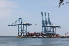 El envase cranes en los trabajos, puerto del norte, puerto Klang, Malasia Imagenes de archivo