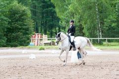 El equestrian del adolescente en el montar a caballo del uniforme de vestido en está a caballo Foto de archivo libre de regalías