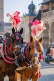 El equipo de dos adornó los caballos para los turistas que montaban Foto de archivo libre de regalías