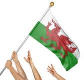 El equipo de gente da el aumento del País de Gales bandera nacional Imagenes de archivo
