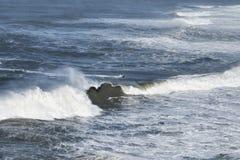 El equipo que practica surf en el océano, ondas grandes en Nazare, equipo de la seguridad portugal Foto de archivo libre de regalías