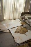 El escaparse del agua dañado a casa Foto de archivo