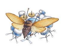 El escarabajo (fallo de funcionamiento) que juega teclea Foto de archivo