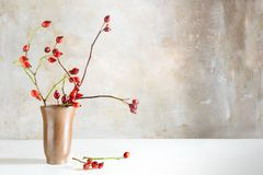 El escaramujo ramifica en un florero del gres en una tabla blanca en o delantero Imagenes de archivo