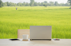 El escritorio de oficina con la taza de la libreta, del cuaderno, del lápiz y de café sobre el arroz cultiva el fondo imagen de archivo libre de regalías