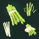 El espárrago implica por las rayas de bambú, vertidas por la salsa Fotos de archivo libres de regalías
