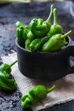 El español mexicano verde crudo sazona el jalapeno con pimienta Fotos de archivo libres de regalías