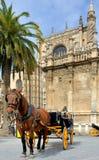El esperar traído por caballo del carro Imagenes de archivo
