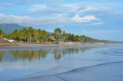 EL Espino de Playa Fotografía de archivo libre de regalías