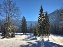 El esquí coloca en Pertisau, Karwendeltal en las montañas en el Tyrol, Austria Foto de archivo