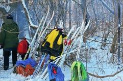El esquí se ha estado colocando cerca del árbol, esquiadores que descansaban en el bosque imágenes de archivo libres de regalías