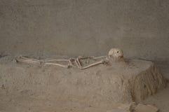 El esqueleto de un romano imágenes de archivo libres de regalías