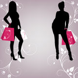 El esquema de dos muchachas de moda con compras Foto de archivo libre de regalías