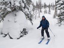 El esquiador abajo lanza el bosque y la nieve imagen de archivo