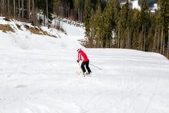 El esquiador está esquiando abajo de la cuesta en el bosque Imagen de archivo libre de regalías