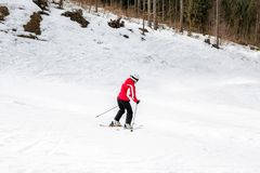 El esquiador está esquiando abajo de la cuesta en el bosque Foto de archivo
