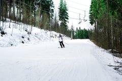 El esquiador está esquiando abajo de la cuesta en el bosque Foto de archivo libre de regalías