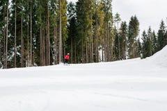 El esquiador está esquiando abajo de la cuesta en el bosque Fotos de archivo