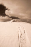 El esquiador sigue el tono de la sepia Imagenes de archivo