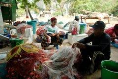 El establecimiento de pescadores en Tailandia Foto de archivo libre de regalías