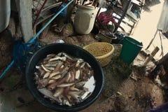 El establecimiento de pescadores en Tailandia Fotos de archivo