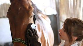 El establo, un jinete de la muchacha en ropa del montar a caballo limpia con un cepillo especial, un peine su caballo hermoso jov metrajes