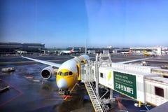 El estacionamiento de los aviones del aire del Scoot en el muelle fotografía de archivo libre de regalías