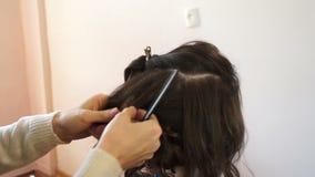 El estilista endereza un filamento del pelo almacen de metraje de vídeo