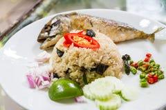 El estilo tailandés frió albahaca y el arroz con la caballa Fotografía de archivo