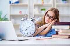 El estudiante adolescente joven que se prepara para los exámenes en casa Imagen de archivo
