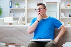 El estudiante joven que se prepara para los exámenes que estudian en casa en un sofá Imagenes de archivo