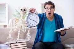 El estudiante que estudia con el esqueleto que se prepara para los exámenes Foto de archivo
