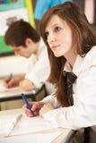 El estudiar adolescente femenino del estudiante Imágenes de archivo libres de regalías