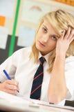 El estudiar adolescente femenino tensionado del estudiante Imagen de archivo