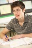 El estudiar adolescente masculino del estudiante Fotografía de archivo libre de regalías