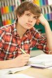El estudiar adolescente masculino tensionado del estudiante Fotografía de archivo