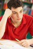 El estudiar adolescente masculino tensionado del estudiante Foto de archivo