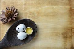 El estudio tiró de huevos en un fondo de madera Imagen de archivo libre de regalías