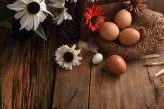 El estudio tiró de huevos en un fondo de madera del vintage Imagenes de archivo