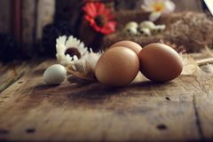 El estudio tiró de huevos en un fondo de madera del vintage Fotos de archivo libres de regalías