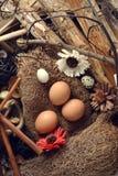 El estudio tiró de huevos en un fondo de madera del vintage Imagen de archivo libre de regalías