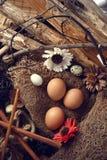 El estudio tiró de huevos en un fondo de madera del vintage Foto de archivo libre de regalías