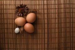 El estudio tiró de huevos en un fondo de madera del vintage Imagen de archivo
