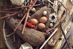 El estudio tiró de los huevos de codornices en un fondo de madera del vintage Imagen de archivo libre de regalías