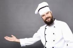 El estudio tiró de un cocinero barbudo invinting le adentro imagen de archivo libre de regalías