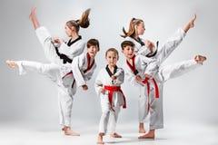 El estudio tiró del grupo de niños que entrenaban a artes marciales del karate Foto de archivo libre de regalías
