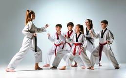 El estudio tiró del grupo de niños que entrenaban a artes marciales del karate fotografía de archivo