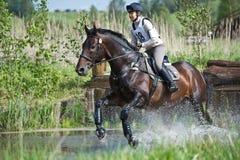 El eventer de la mujer en caballo se corre en salto de agua Imagen de archivo