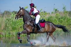 El eventer de la mujer en caballo se ejecuta en salto de agua Fotos de archivo