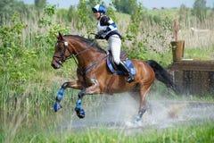 El eventer de la mujer en caballo se ejecuta en salto de agua Imagenes de archivo